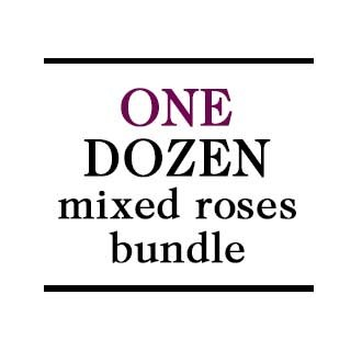 Bundle - 1 Dozen Mixed Roses