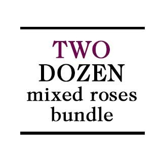 Bundle - 2 Dozen Mixed Roses