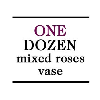 Vase - 1 Dozen Mixed Roses