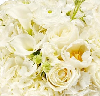 Luxury flower delivery service hbloom luxury white flowers elegant and refined shop white flower bouquets mightylinksfo Image collections